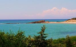 taxi-katakolo-beach-1